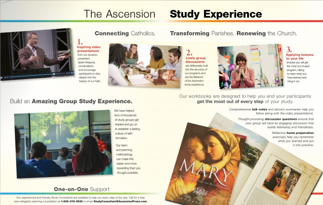 study-program-image.jpg
